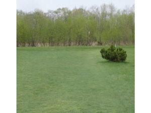 14号河川敷パークゴルフ場